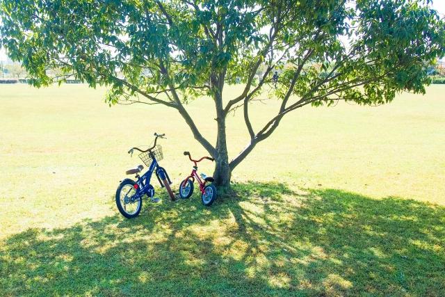 都内の子供でも安全に自転車の練習ができるスポット!