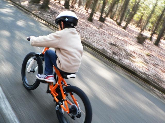 小学生の自転車練習方法!都内で自転車練習できる公園は?