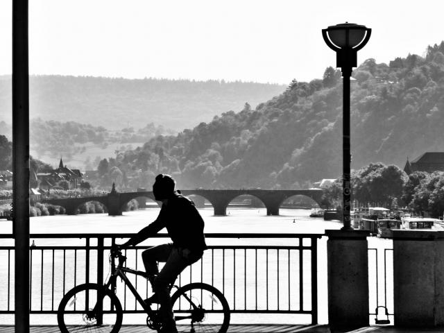 中国・ドイツの自転車事情と自転車性能の違いを比較!