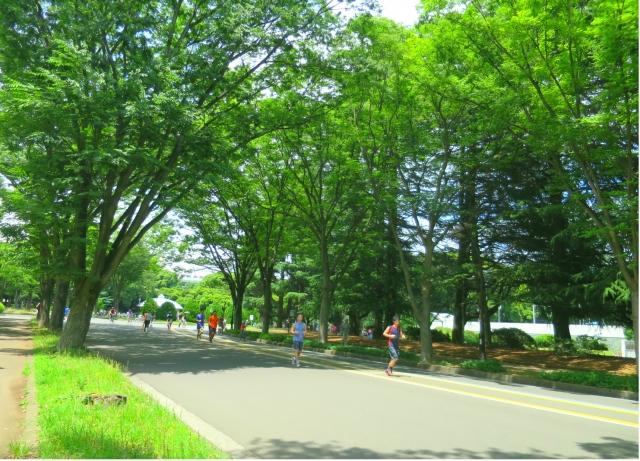 駒沢公園内にあるサイクリングコースの魅力をご紹介!