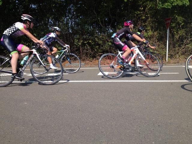 自転車プロ選手は平均時速40km越え!?レース出場するには?