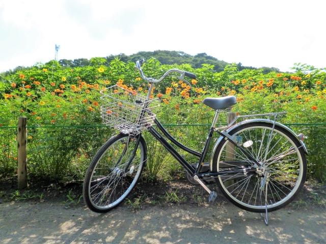 自転車に於ける後輪ブレーキに関するあんなコトやこんなコト