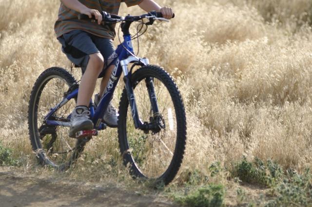 マウンテンバイクのタイヤはなぜ太い?タイヤを使い分けよう
