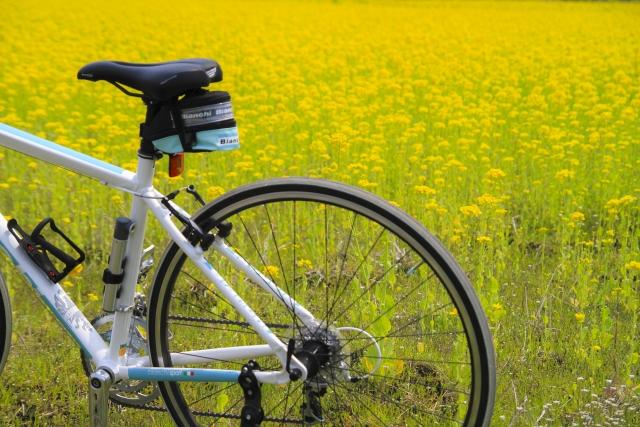 ビアンキのクロスバイクにおけるサイズ選びの重要さを知る